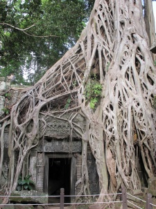 Fig tree over doorway (Lara Croft Tomb Raider film)