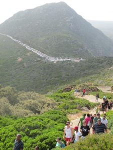 Hiking to Cape Point