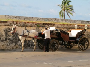 Horse  carriage at Las Murallas